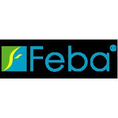 Feba (Польша)